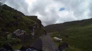 Inside the Ring of Kerry